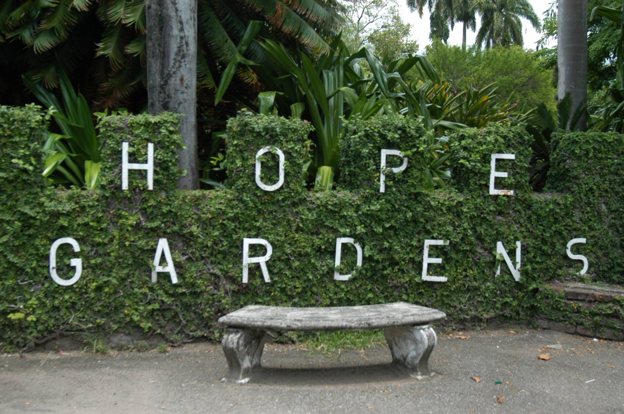 Hope Gardens Kingston, St. Andrew Heritage Sites   Jamaica Information  Service View Hope Gardens ...