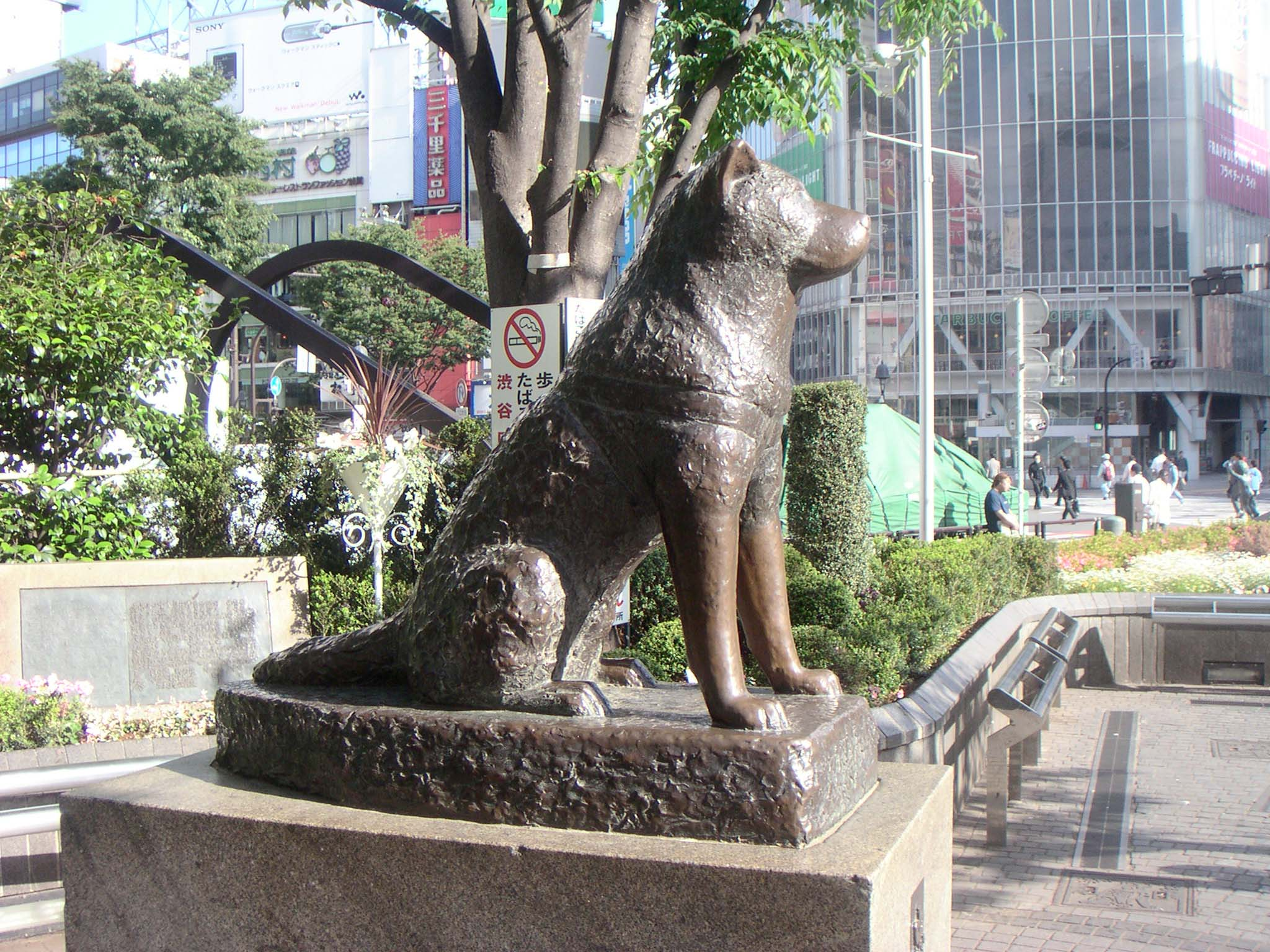 Ikebukuro Earthquake Hall Tokyo, Inspired by the Story of a Famous dog in Japan named Hachiko ...