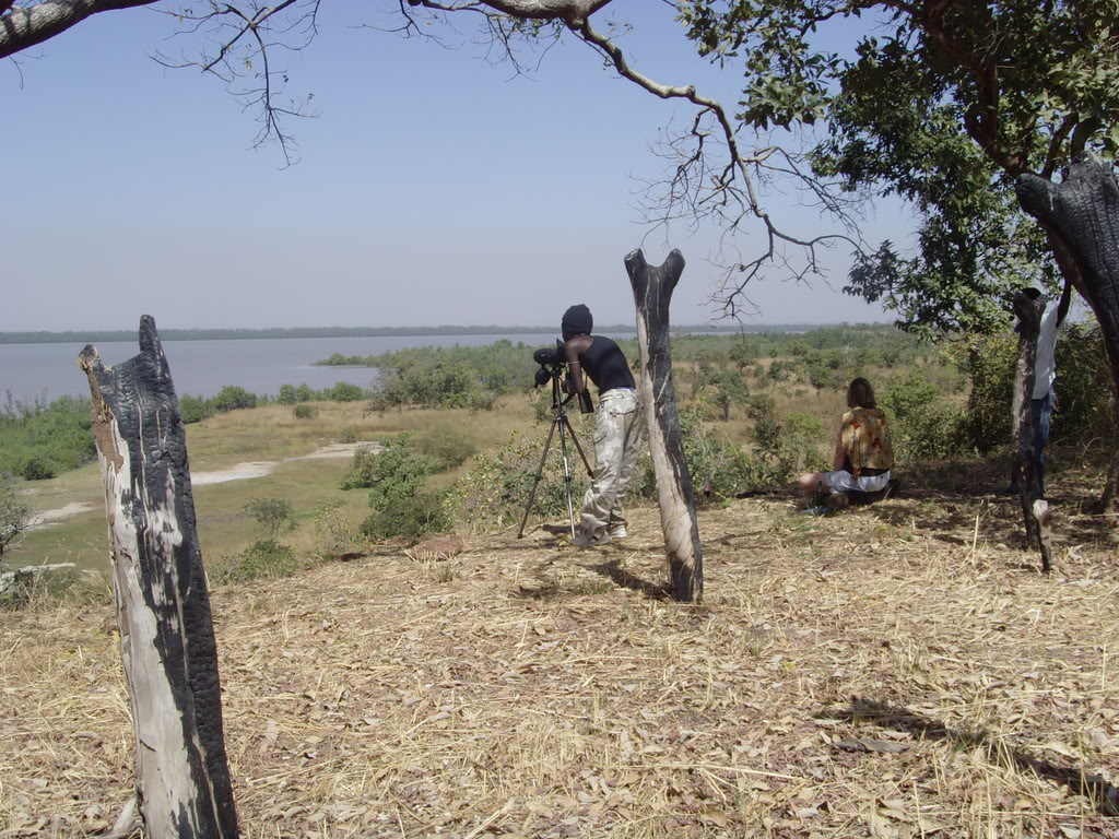 Kiang West National Park West Africa, West Kiang National Park - Banjul, Gambia | Things to do