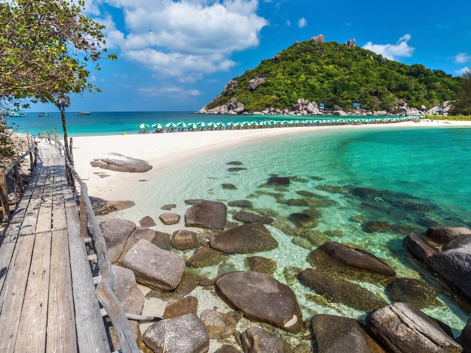 Koh Nang Yuan The Gulf Coast Beaches, Koh Tao And Koh Nang Yuan Day Tour By Private Speedboat Charter