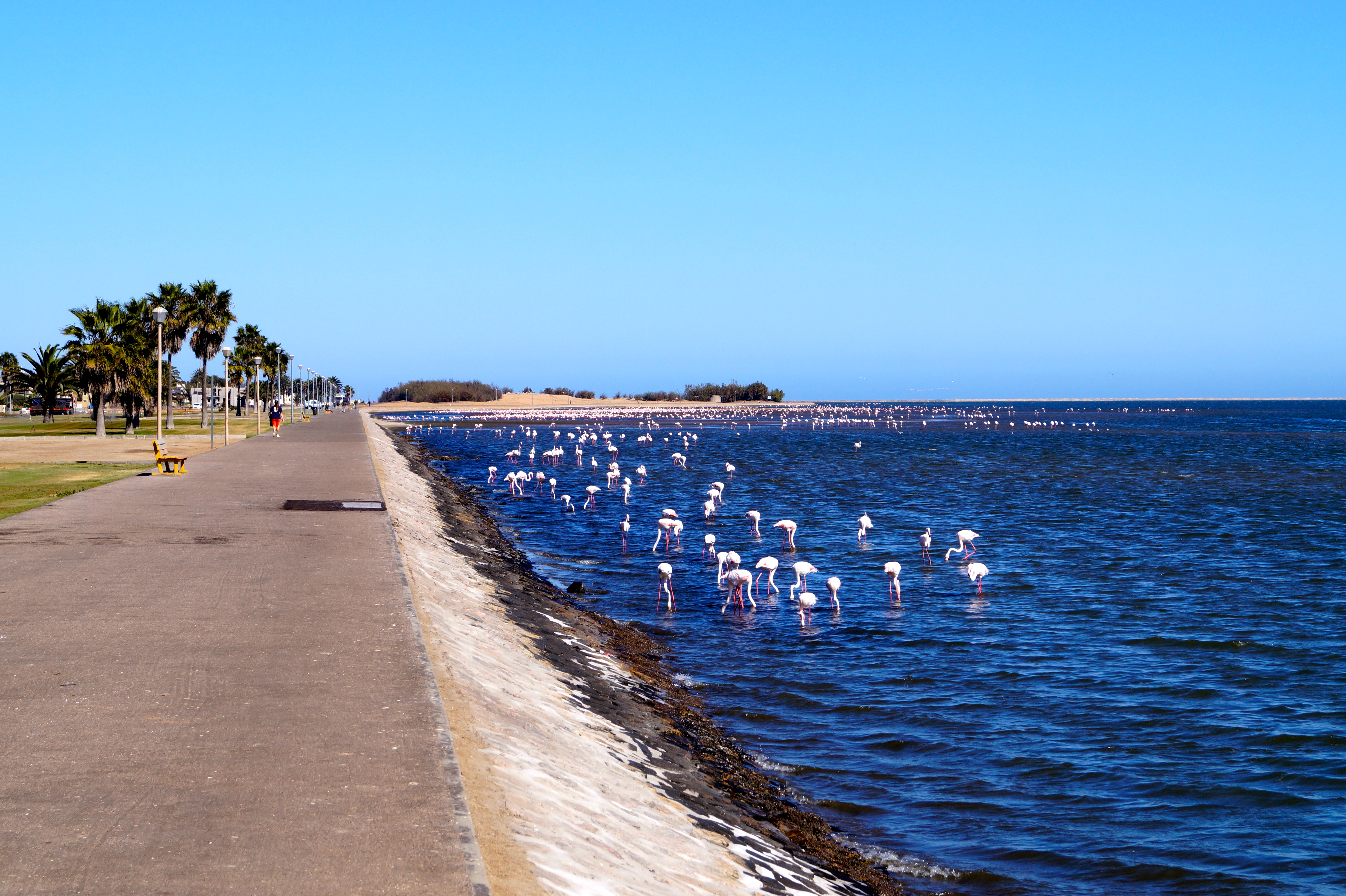 Lagoon Walvis Bay, Namibia – Walvis Bay and Swakopmund | Travels Of A Flight Attendant