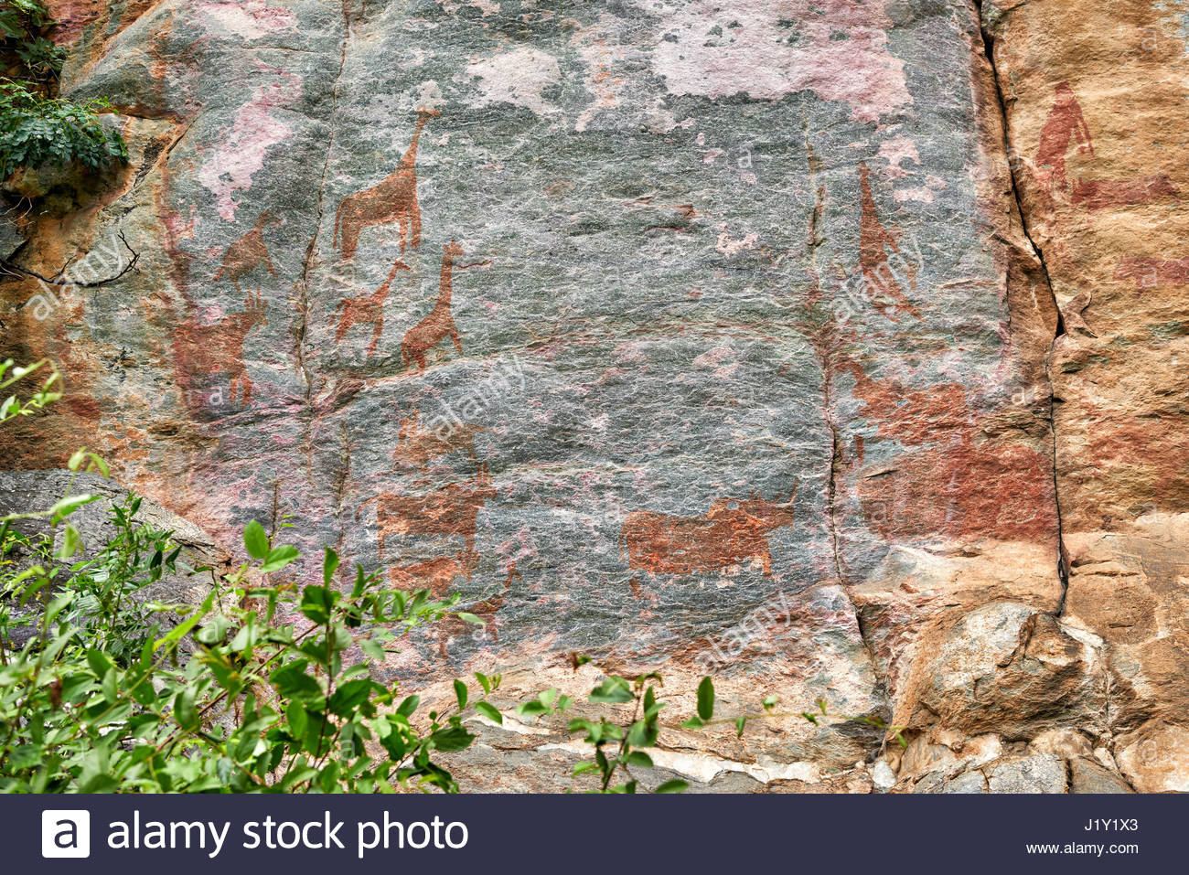 Lion Painting Tsodilo Hills, Ancient Pictograms Stock Photos & Ancient Pictograms Stock Images ...