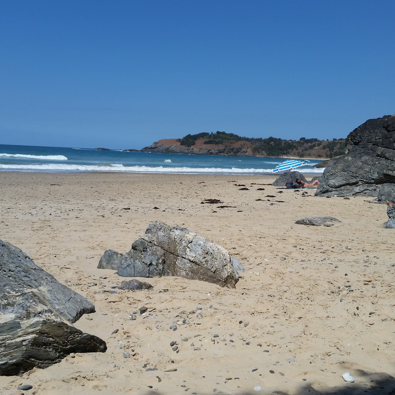 Little Diggers Beach Coffs Harbour, Events - QYoga