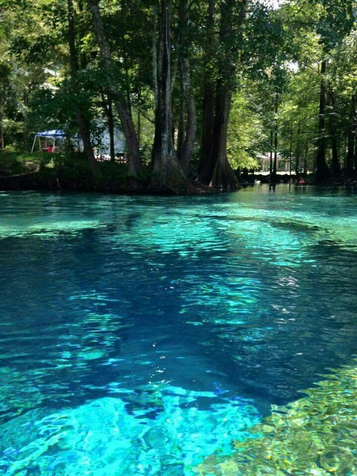 Lost Maples State Natural Area Hill Country, Best 25+ High springs fl ideas on Pinterest | High springs florida ...