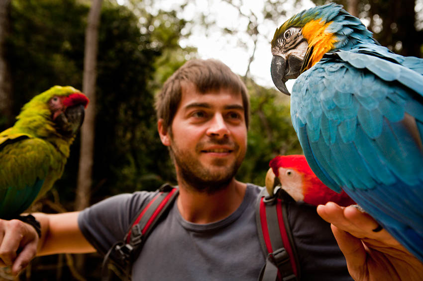 Macaw Mountain Bird Park Copán Ruinas, Meetings full of colours | The Family Without Borders