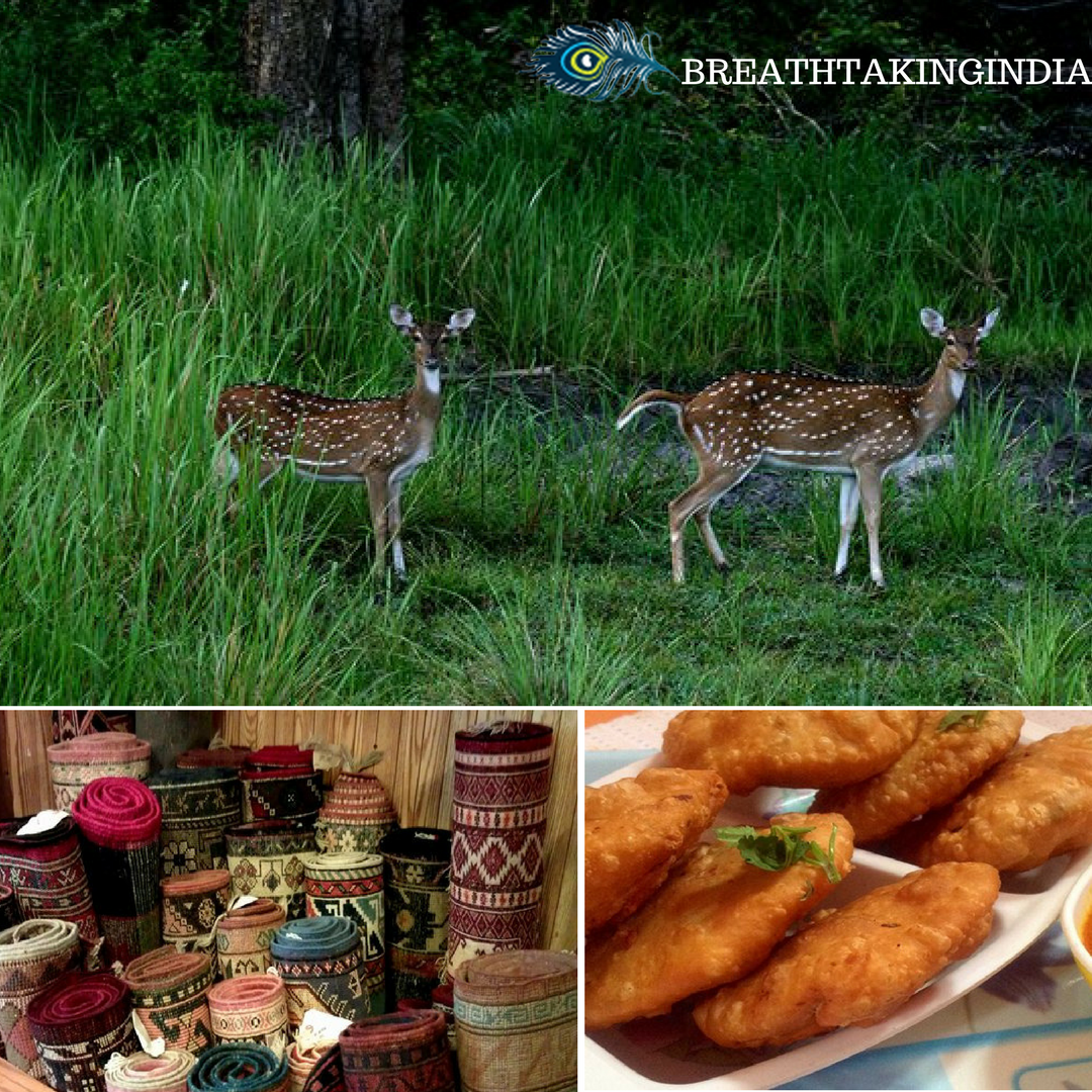 Madhav National Park Gwalior, Gwalior: A Historical City in the Heart of India! Take the ...