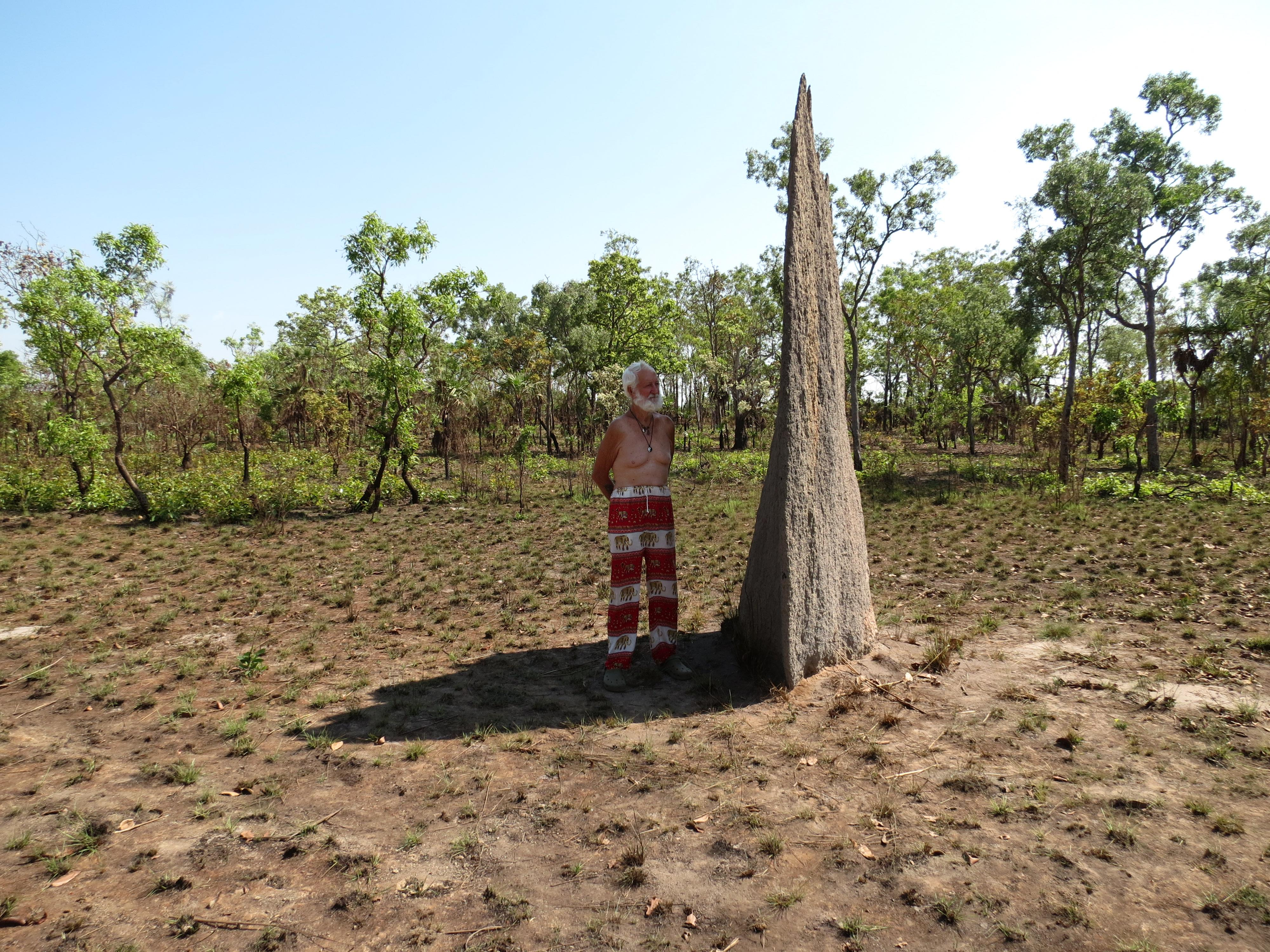 Magnetic Termite Mounds Litchfield National Park, magnetic termite mounds | gypsy life