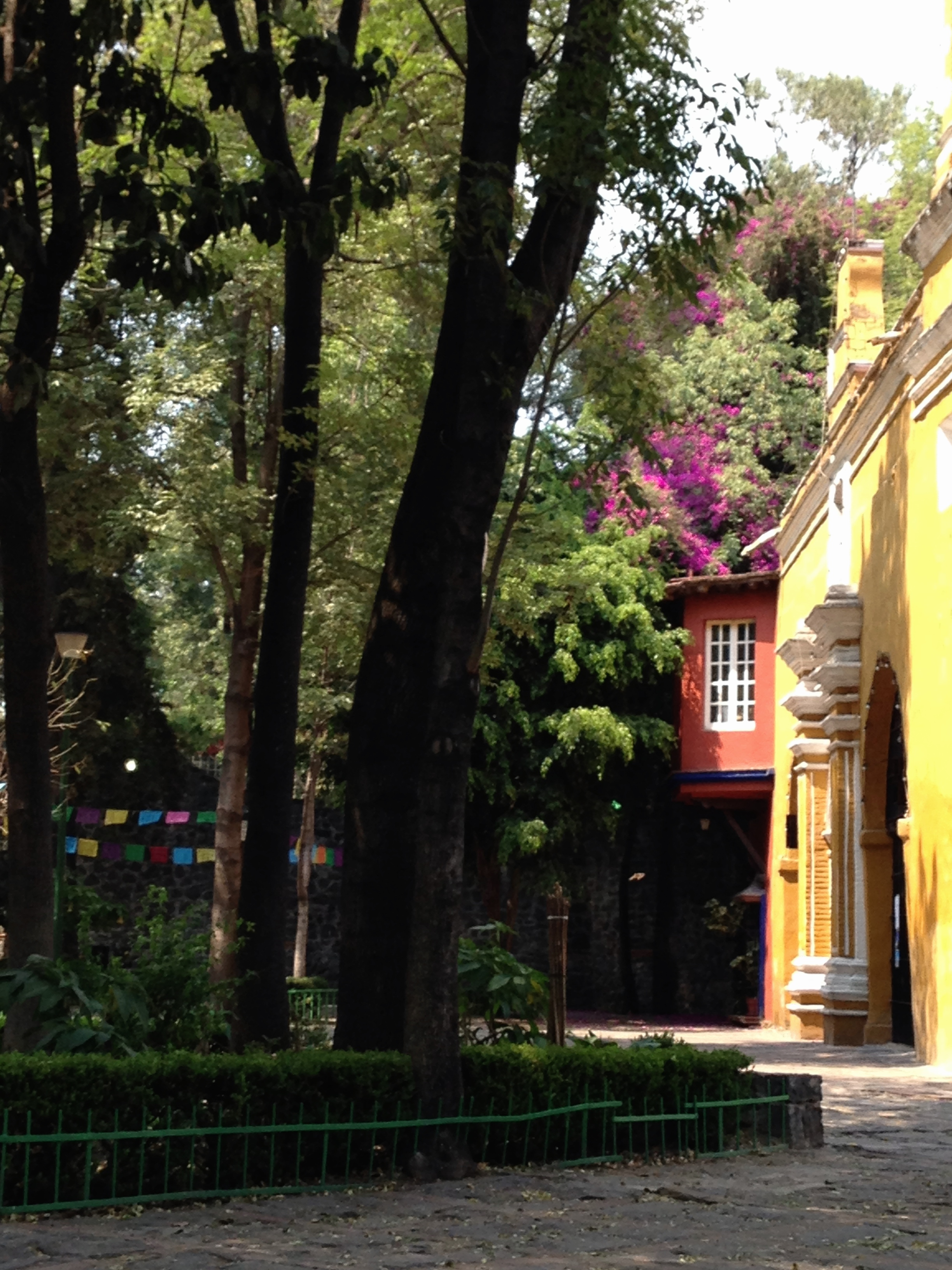 Canals Mexico City, Plaza de la Santa Catarina, Coyoacan, Mexico City | pictures ...