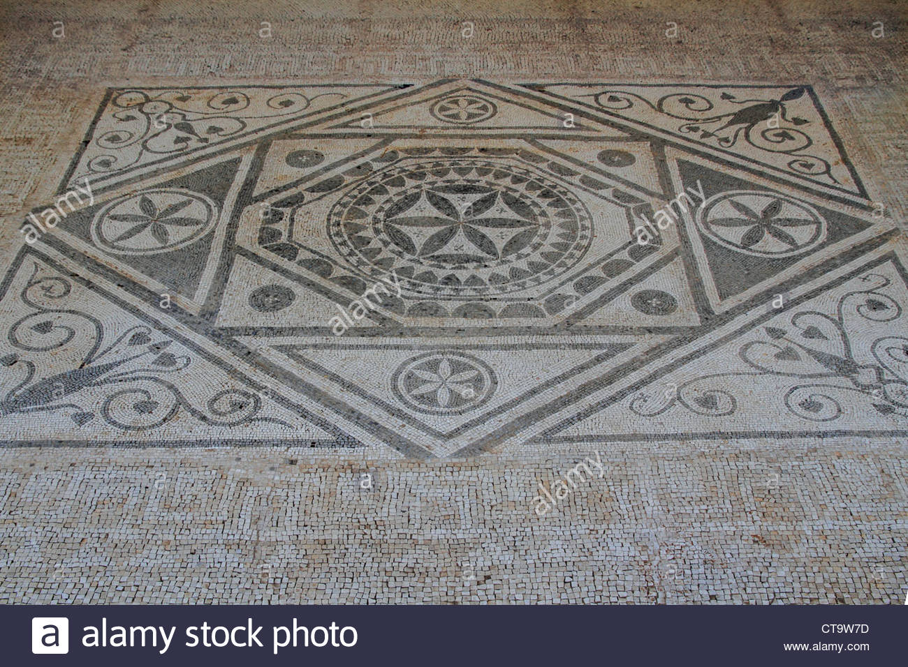 Mosaics Risan, Montenegro Kotor bay Risan, Roman mosaics Stock Photo, Royalty ...