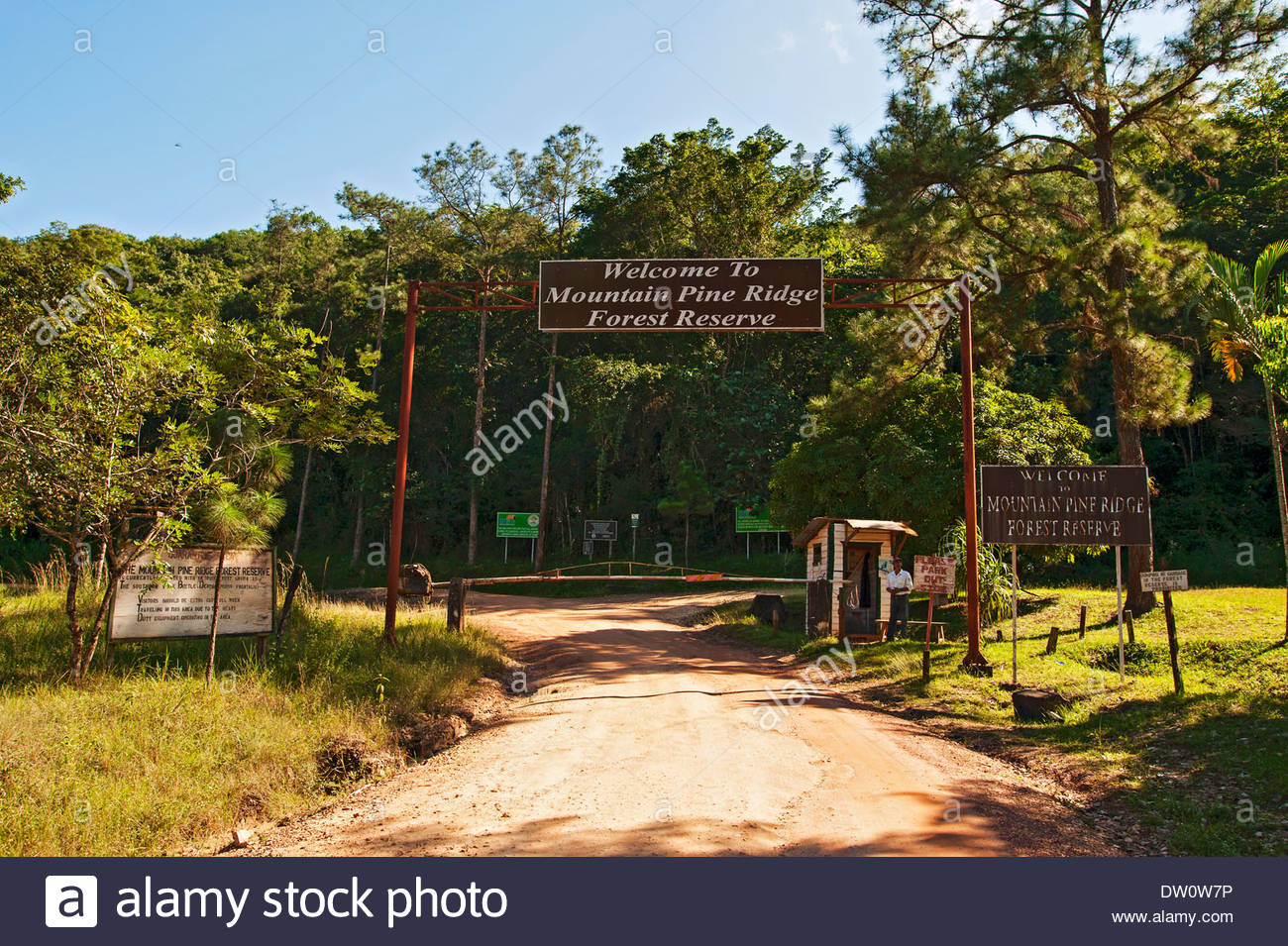 Mountain Pine Ridge Forest Reserve Mountain Pine Ridge Area, Entrance to Mountain Pine Ridge Forest Reserve, Belize Stock Photo ...