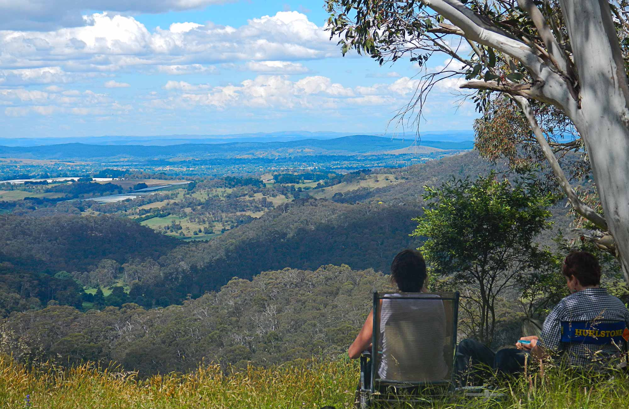 Mt Canobolas Orange, Mount Towac walk | NSW National Parks