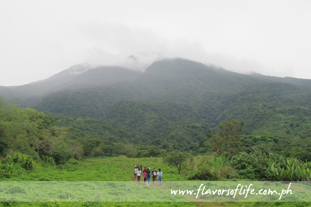Mt Isarog National Park Bicol, The Naga Experience (Part 1): High Adventure at Its Best! |