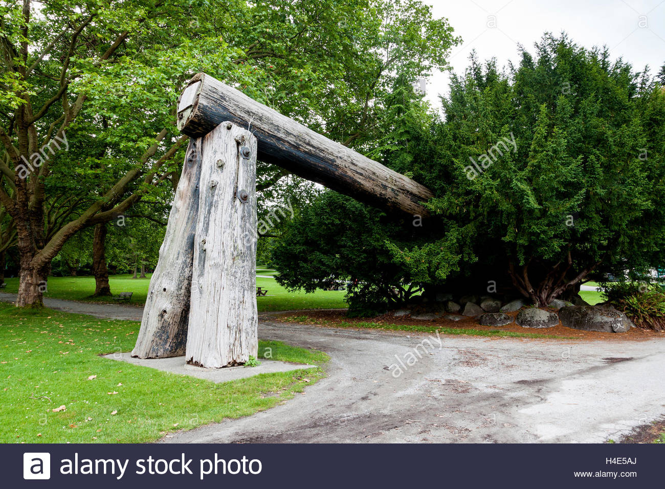 Museum of Vancouver Vancouver, Lumberman's Arch at Stanley Park in Vancouver. The single log ...