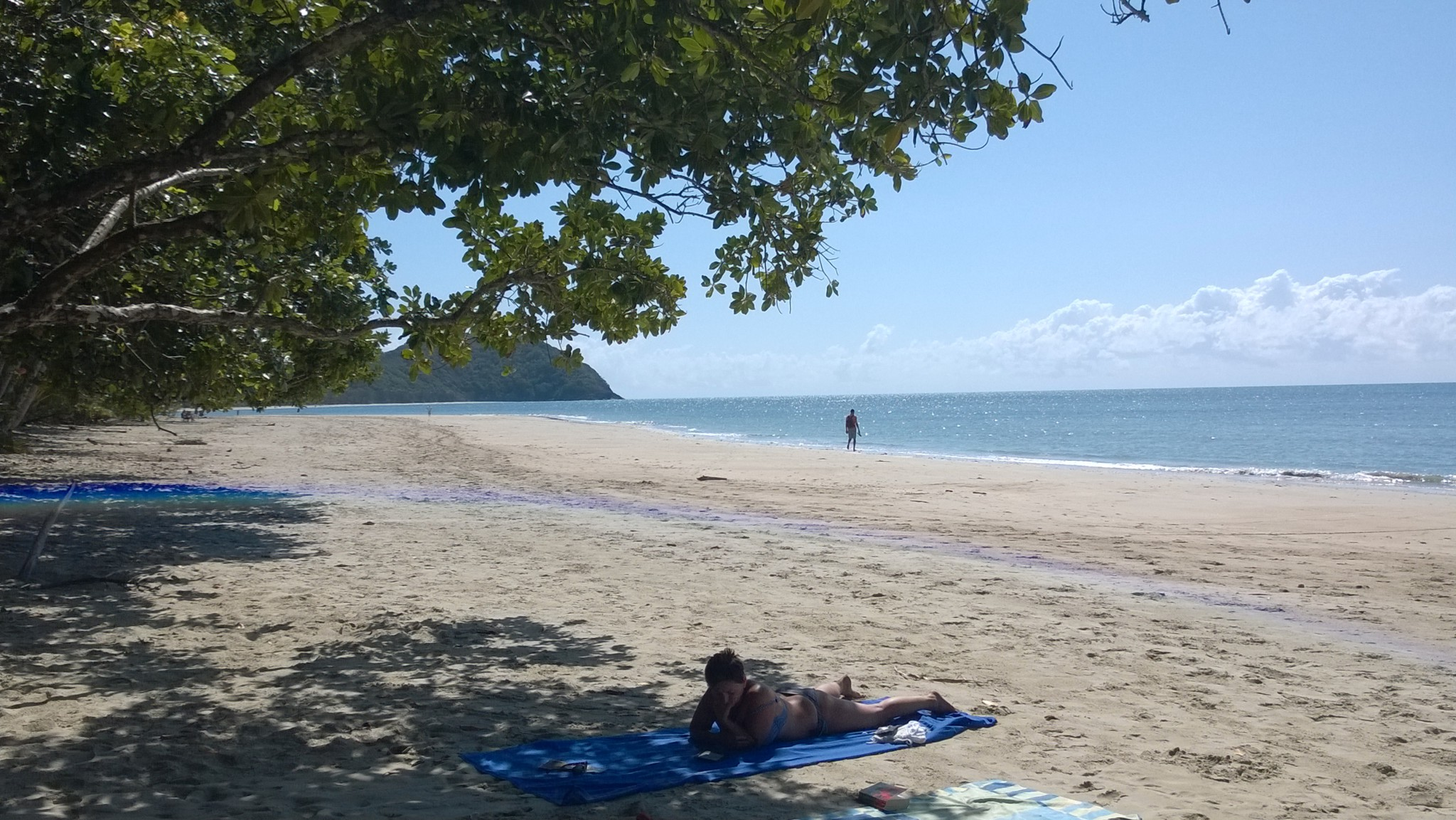 Myall Beach Cape Tribulation, Myall Beach, Cape Tribulation Camping - Routes and Trips