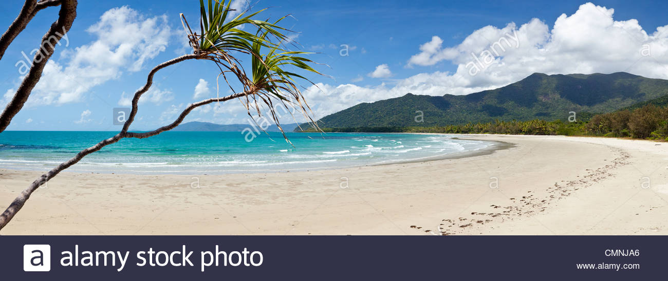 Myall Beach Cape Tribulation, View of Myall Beach. Cape Tribulation, Daintree National Park ...