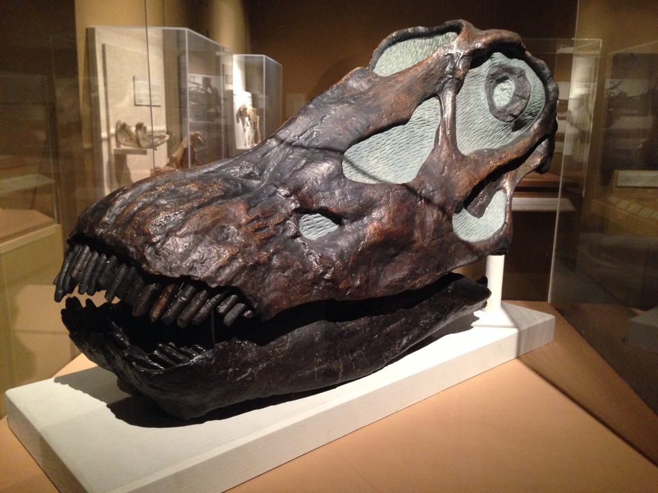 Chester County Historical Society Brandywine Valley, University of Colorado Museum of Natural History in Boulder, CO ...