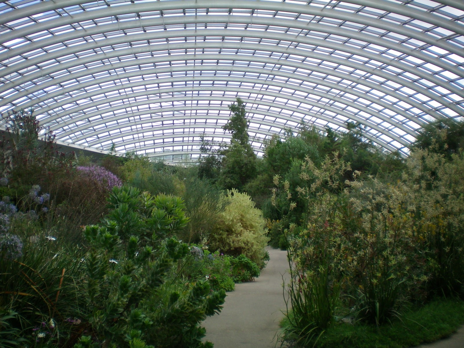 National Botanic Garden of Wales Llanarthne, Free Fathers' Day entry for Dads at the National Botanic Garden of ...