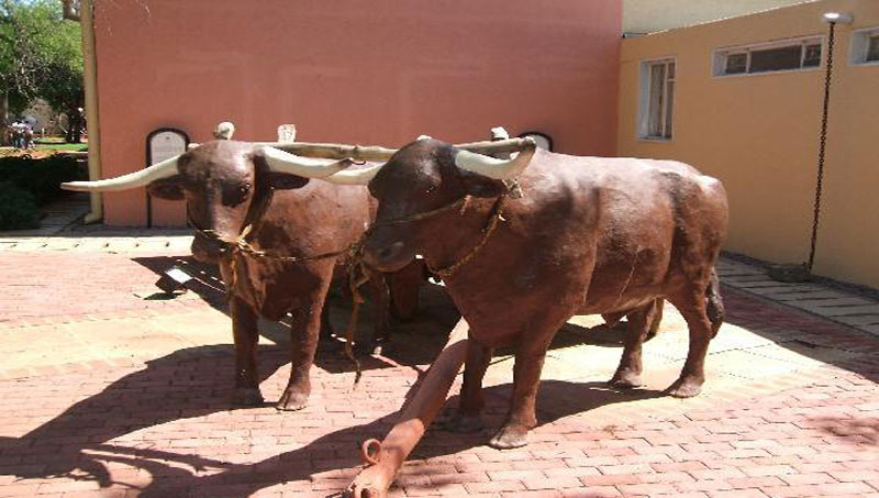 National Museum & Art Gallery Gaborone, The Gaborone National Museum & Art Gallery   Afro Tourism