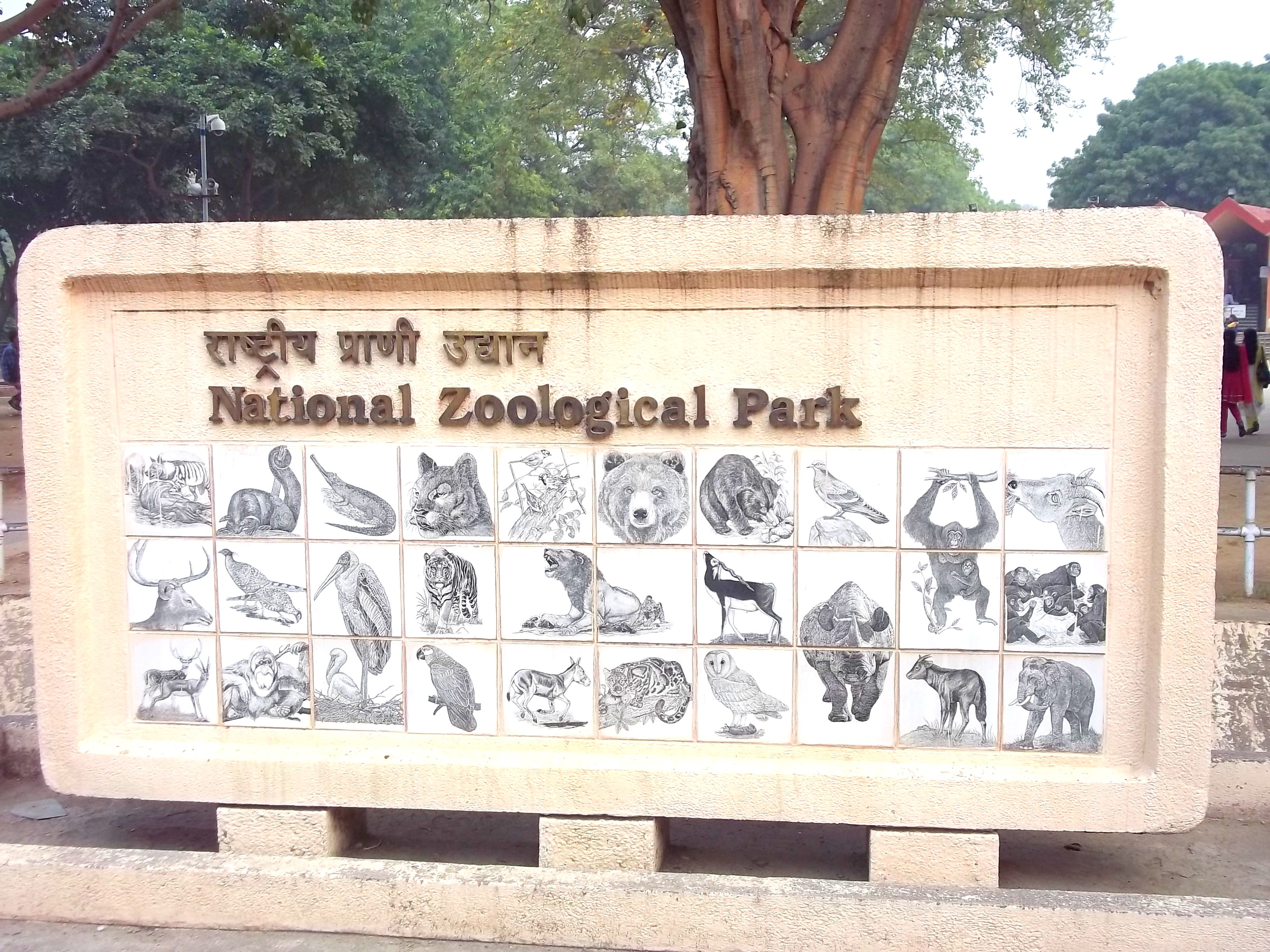 National Zoological Gardens Delhi, national zoological park delhi | Manthan Diary