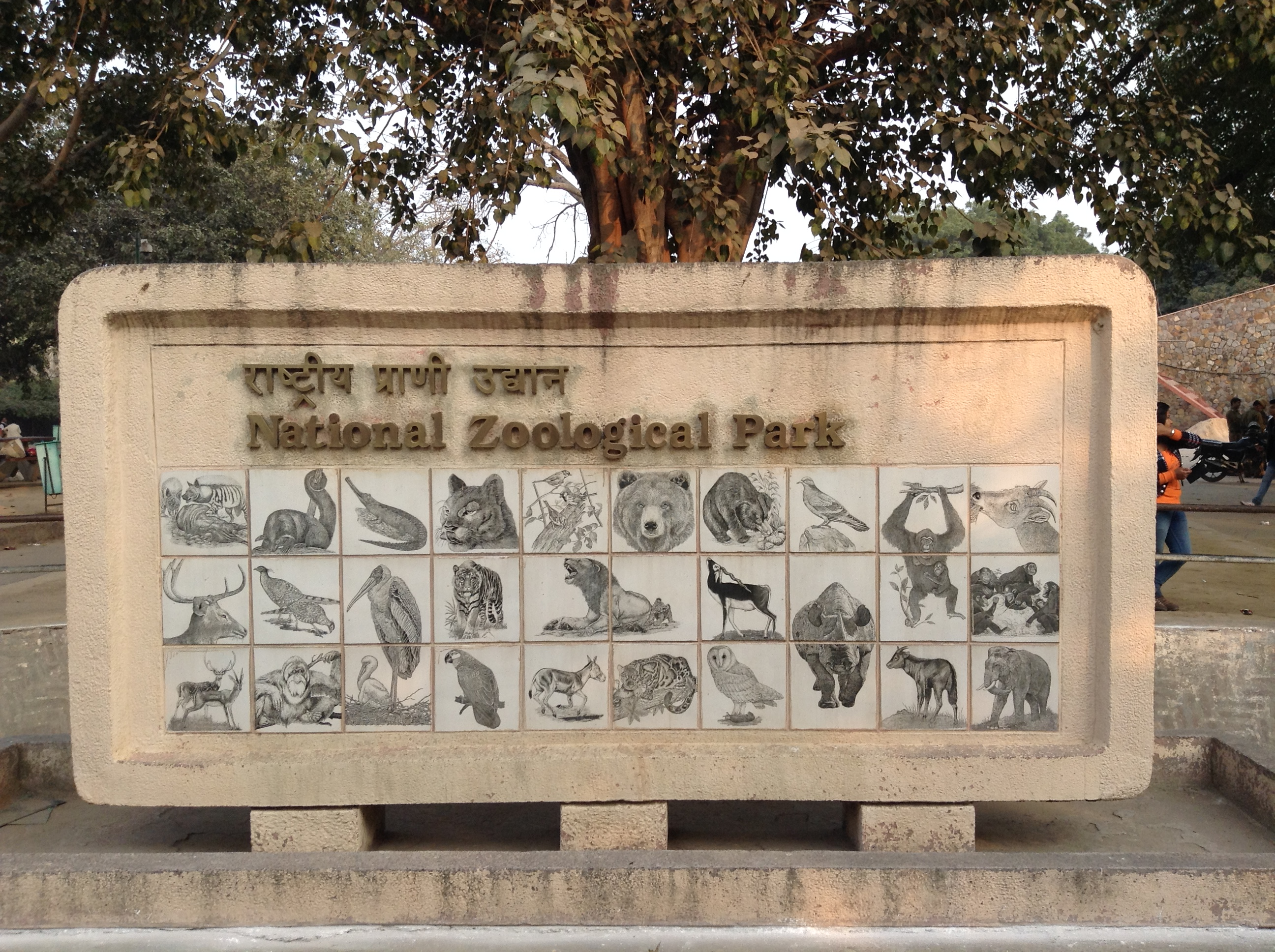 National Zoological Park Delhi, IMG_0242.jpg