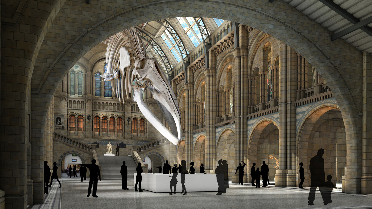 Natural History Museum London, Natural History Museum London - Museums and galleries - Art Fund
