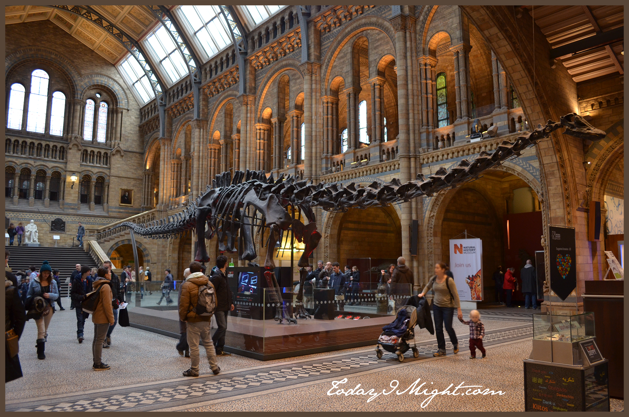 Natural History Museum London, London's Natural History Museum - Today I Might...