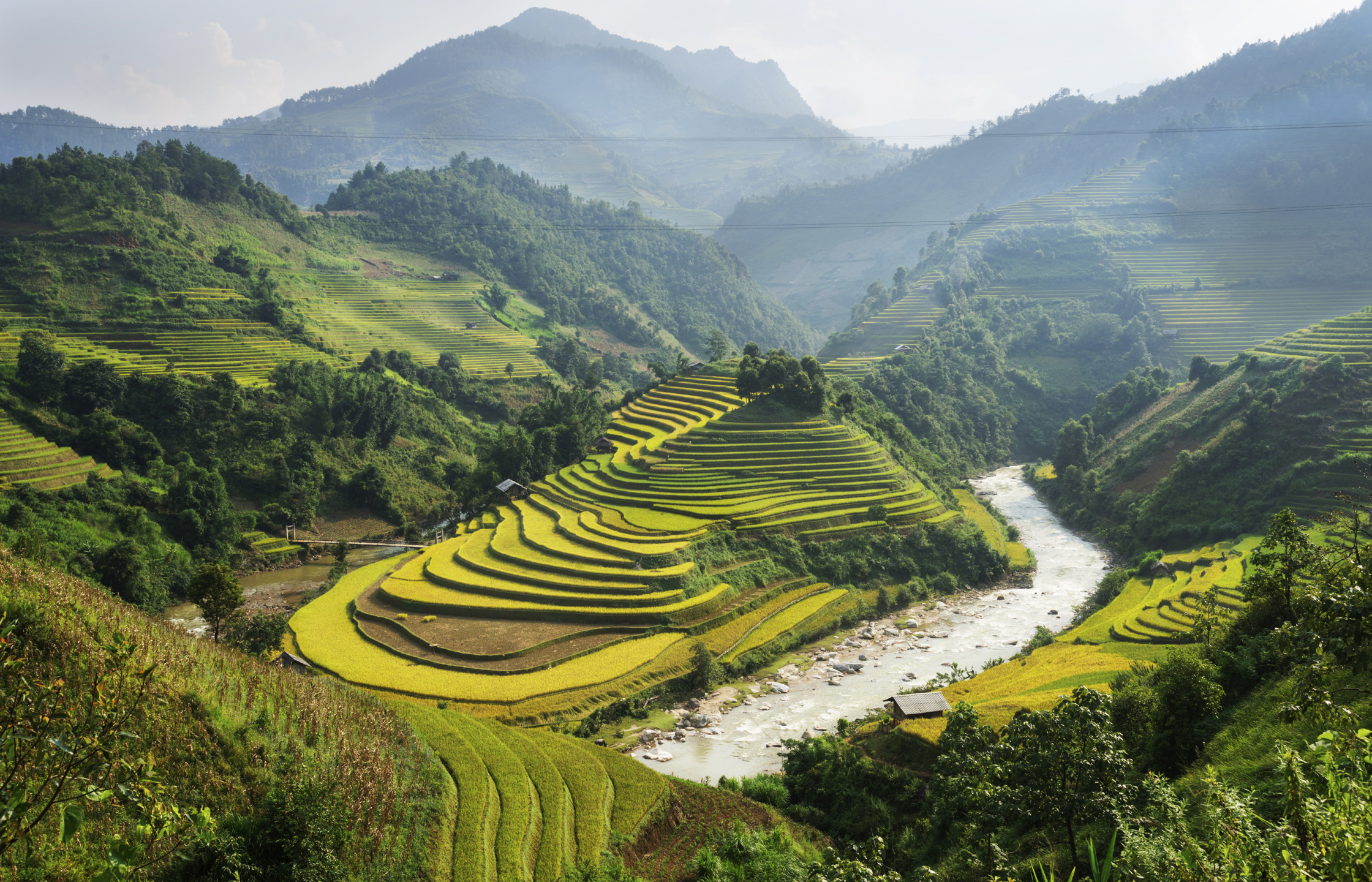 Nui Hoang Lien Nature Reserve The Northwest, Hoàng Liên National Park - exceptionally scenic district of Sapa ...