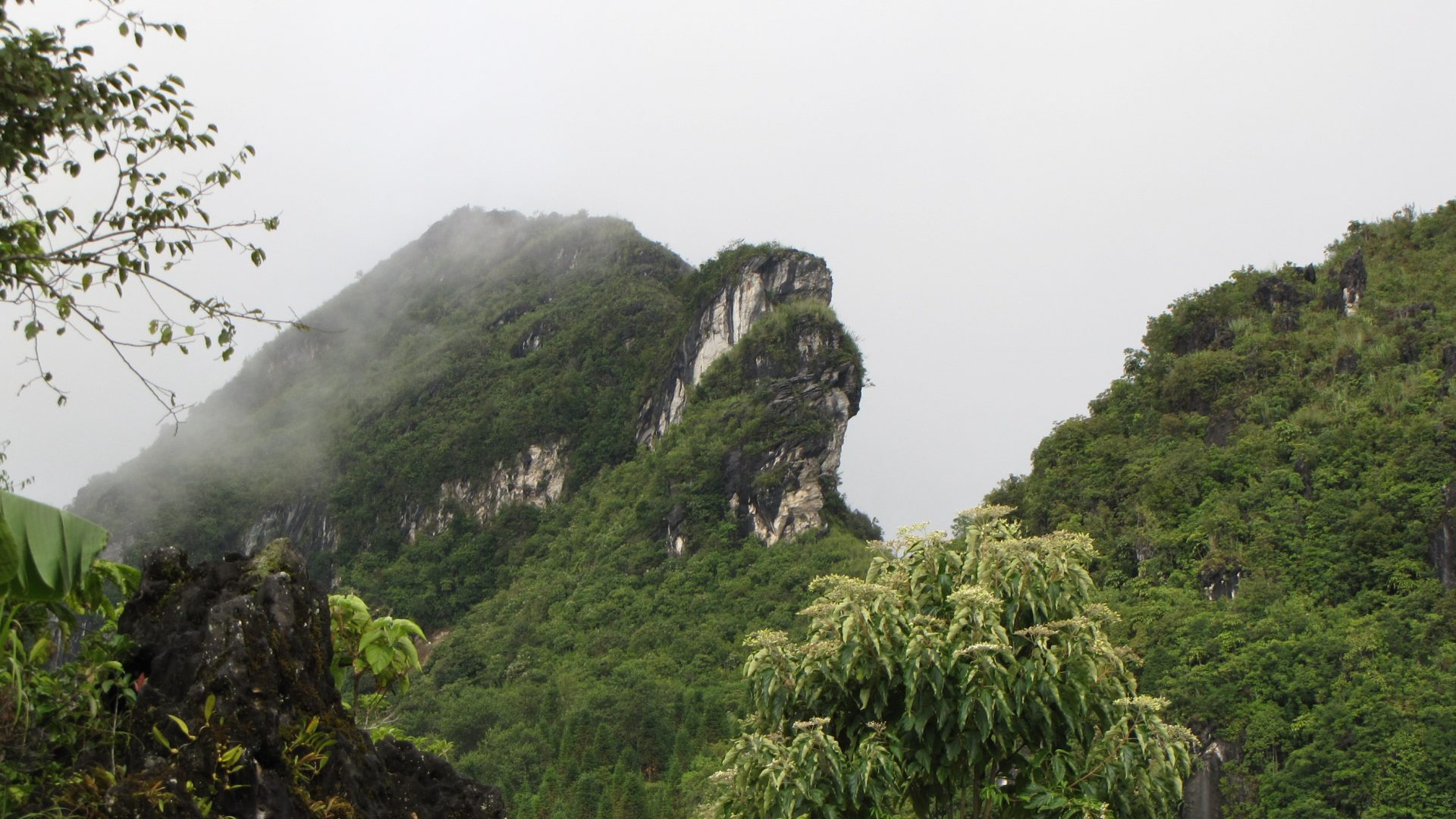 Nui Hoang Lien Nature Reserve The Northwest, Discover Sapa Archives - Silkpath