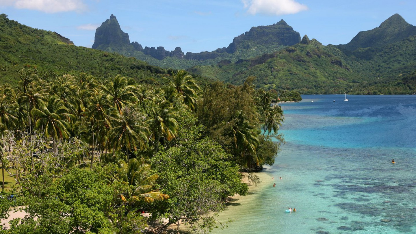 Opunohu Agricultural College Moorea, Private island guided tour 4X4