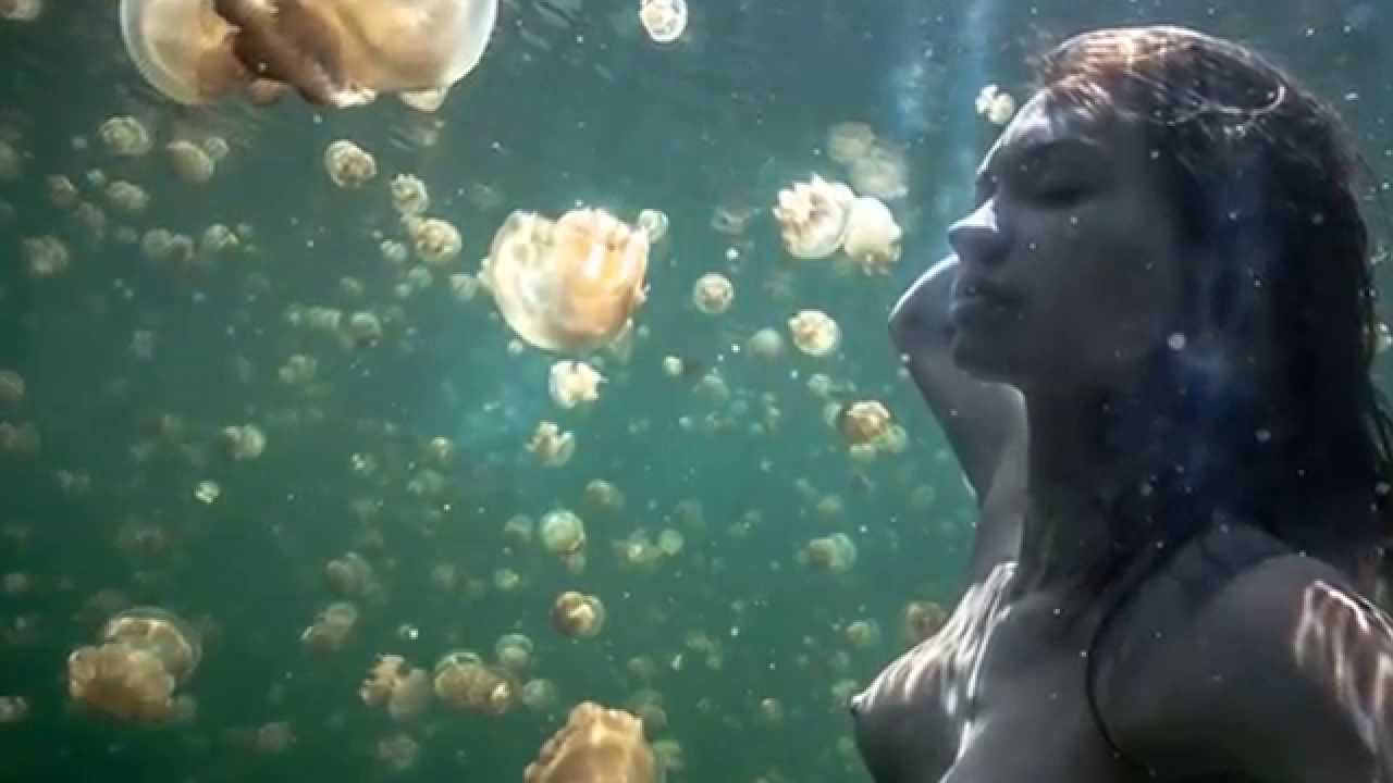 Palau Aquarium Koror, Natural wonders - Jellyfish Lake Palau - YouTube
