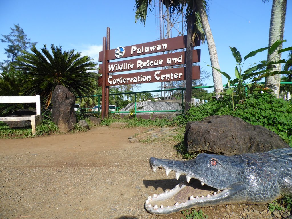 Palawan Wildlife Rescue & Conservation Center Puerto Princesa, Panoramio - Photo of Palawan Wildlife Rescue and Conservation ...