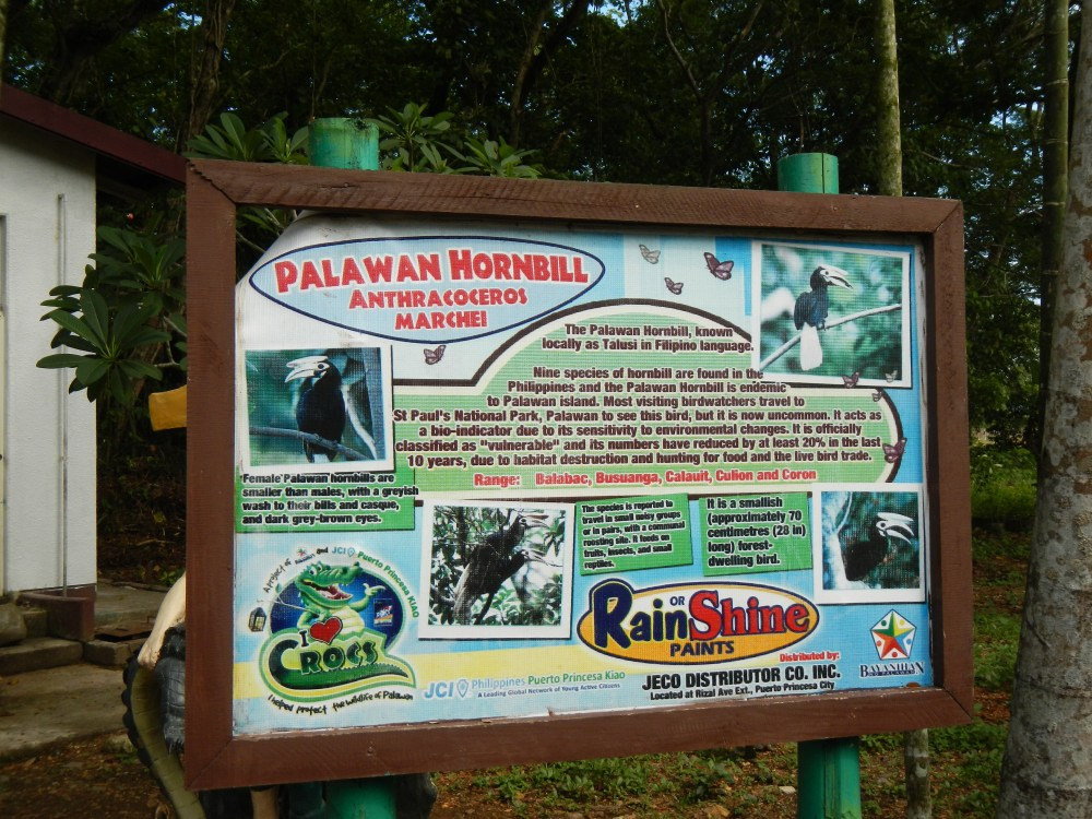 Palawan Wildlife Rescue & Conservation Center Puerto Princesa, Puerto Princesa City Tour: Palawan Wildlife Rescue and ...