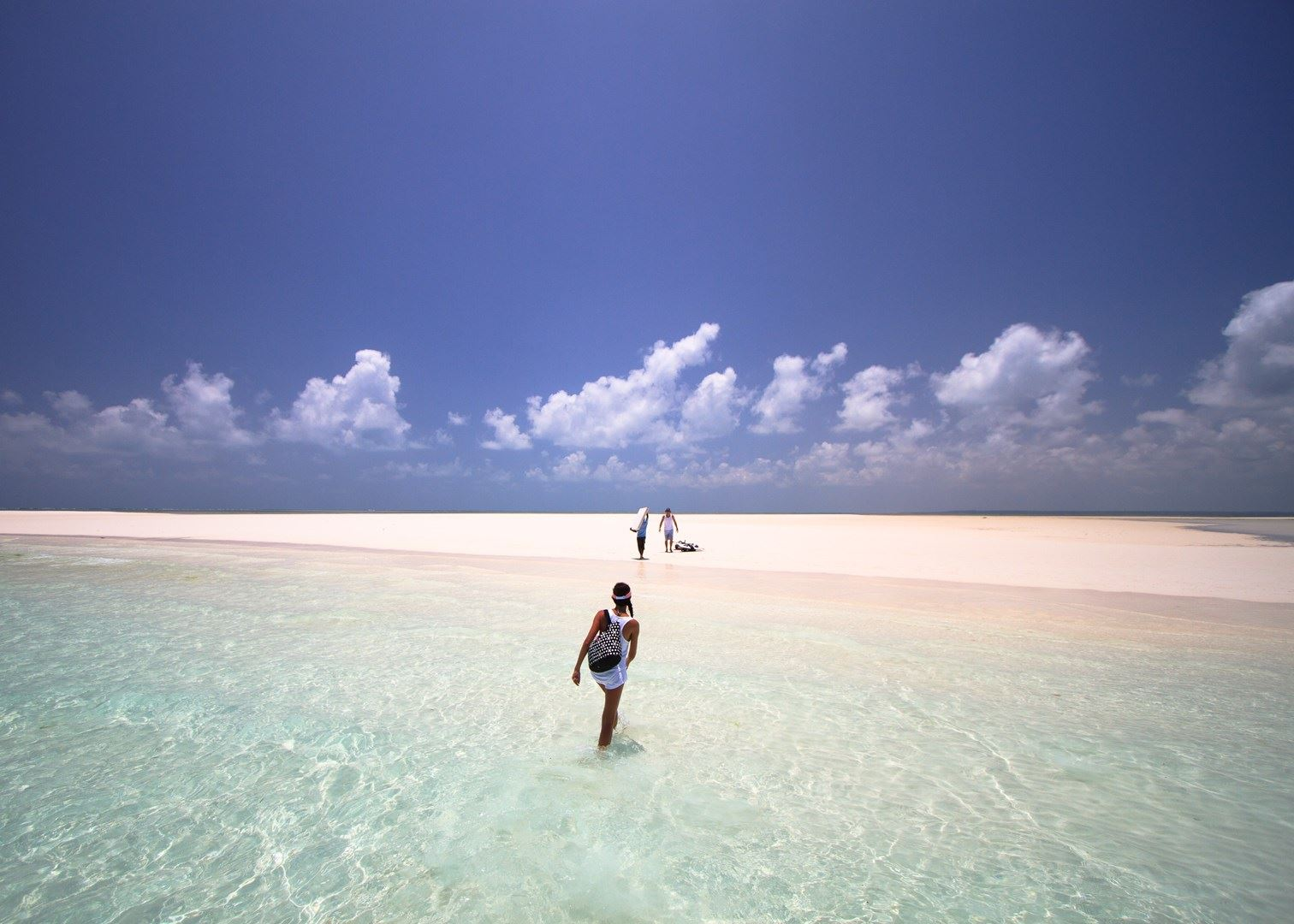 Pemba Channel Conservation Area  - Things to Do in Pemba Island