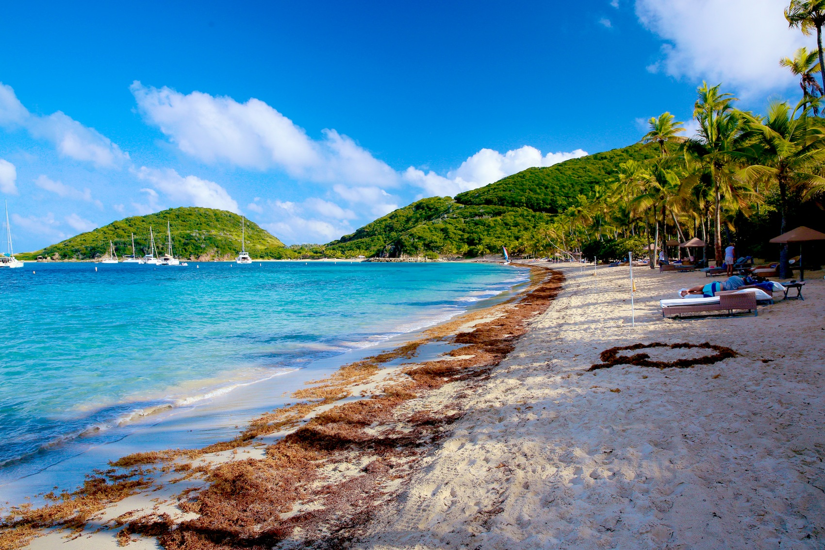 Diving and Snorkeling Guide to the British Virgin Islands British virgin islands pictures