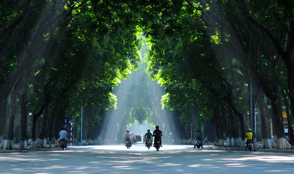 Phan Dinh Phung Street Hanoi, 4 things you should know about Hanoi summer - HANOIKIDS CLUB