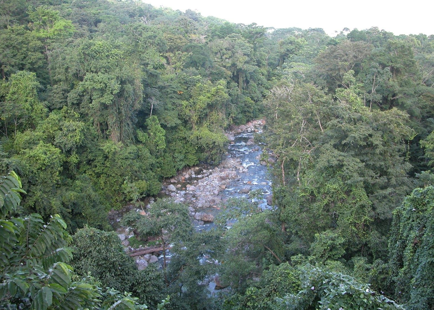 Pico Baltimore La Mosquitia, Tailor-Made Vacations to Honduras | Audley Travel