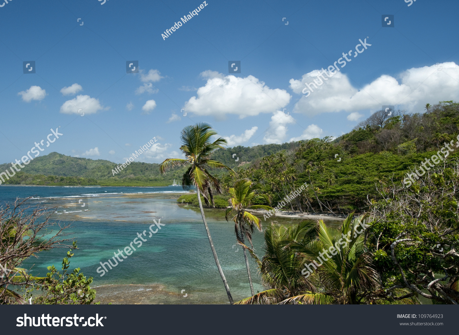 Playa Cacique The Canal and Central Panama, View Shore Palm Trees Punta Cacique Stock Photo 109764923 ...