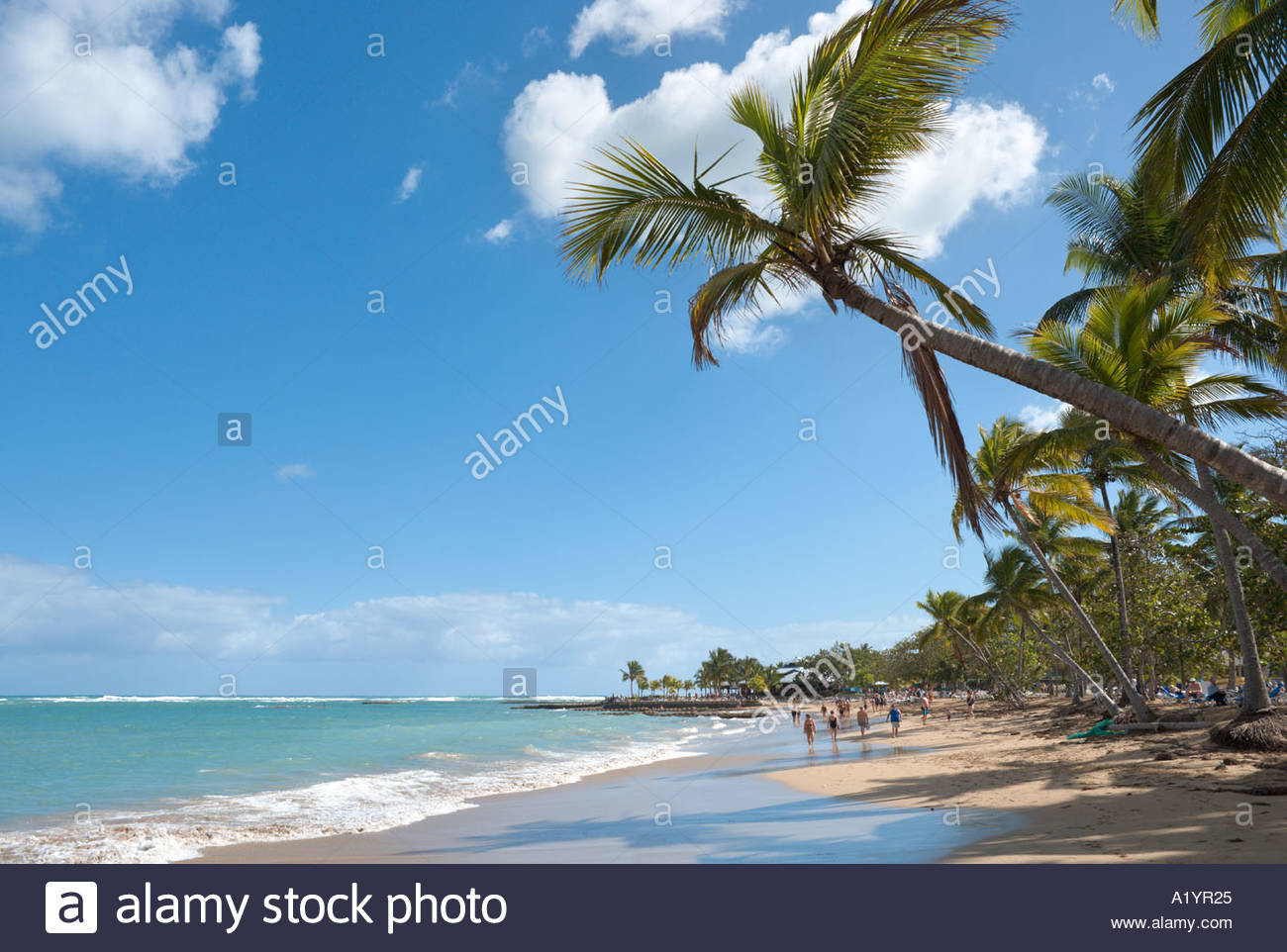 playa dorada upload Download playa dorada stock photos affordable and search from millions of royalty free images, photos and vectors thousands of images added daily.