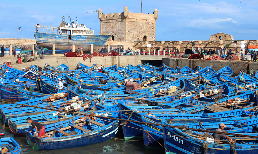 Port Essaouira, Excursion from marrakech and desert - Morocco tours