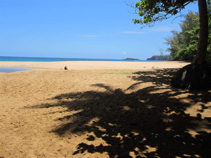 Puu Poa Beach Kauai, Secret (Kauapea) Beach, Kauai | Get the Scoop on Kauai Beaches ...