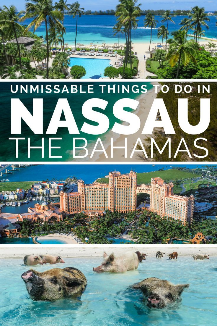 Queen's Staircase New Providence and Paradise Islands, Why you must visit Nassau & Paradise Island   Bahamas honeymoon ...