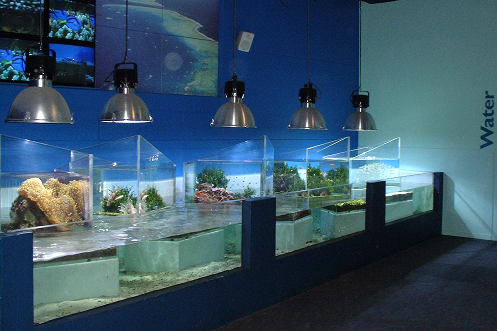 Reef HQ Aquarium Townsville, REEF HQ TOWNSVILLE, GREAT BARRIER REEF MARINE PARK AUTHORITY ...