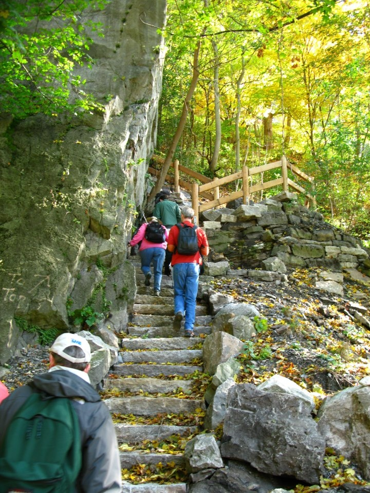 Rock City Niagara Falls and Western New York, 22 best Niagara Gorge Trail System images on Pinterest | Trail ...