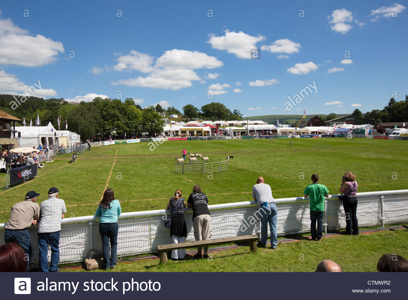Royal Welsh Show Mid-Wales, Crowds watch the sheepdog trials at the Royal Welsh show, Mid ...