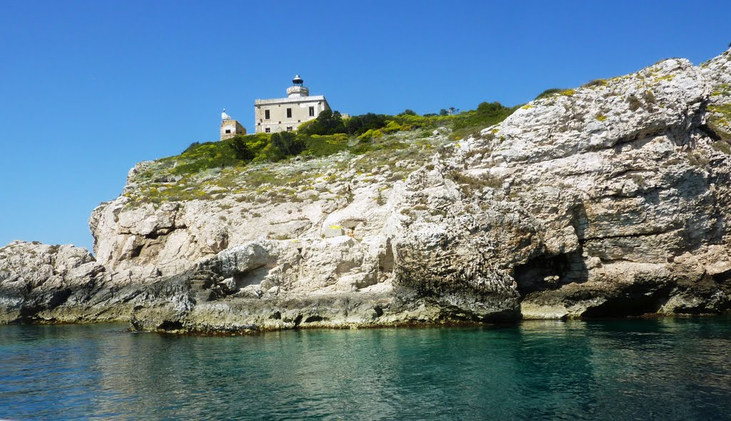San Domino Isole Tremiti, Panoramio - Photo of L'AMATA PUGLIA : Isole Tremiti - Isola di San ...