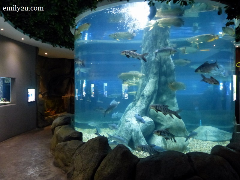 Shore Oceanarium Melaka City, The Shore Oceanarium, Melaka | From Emily To You