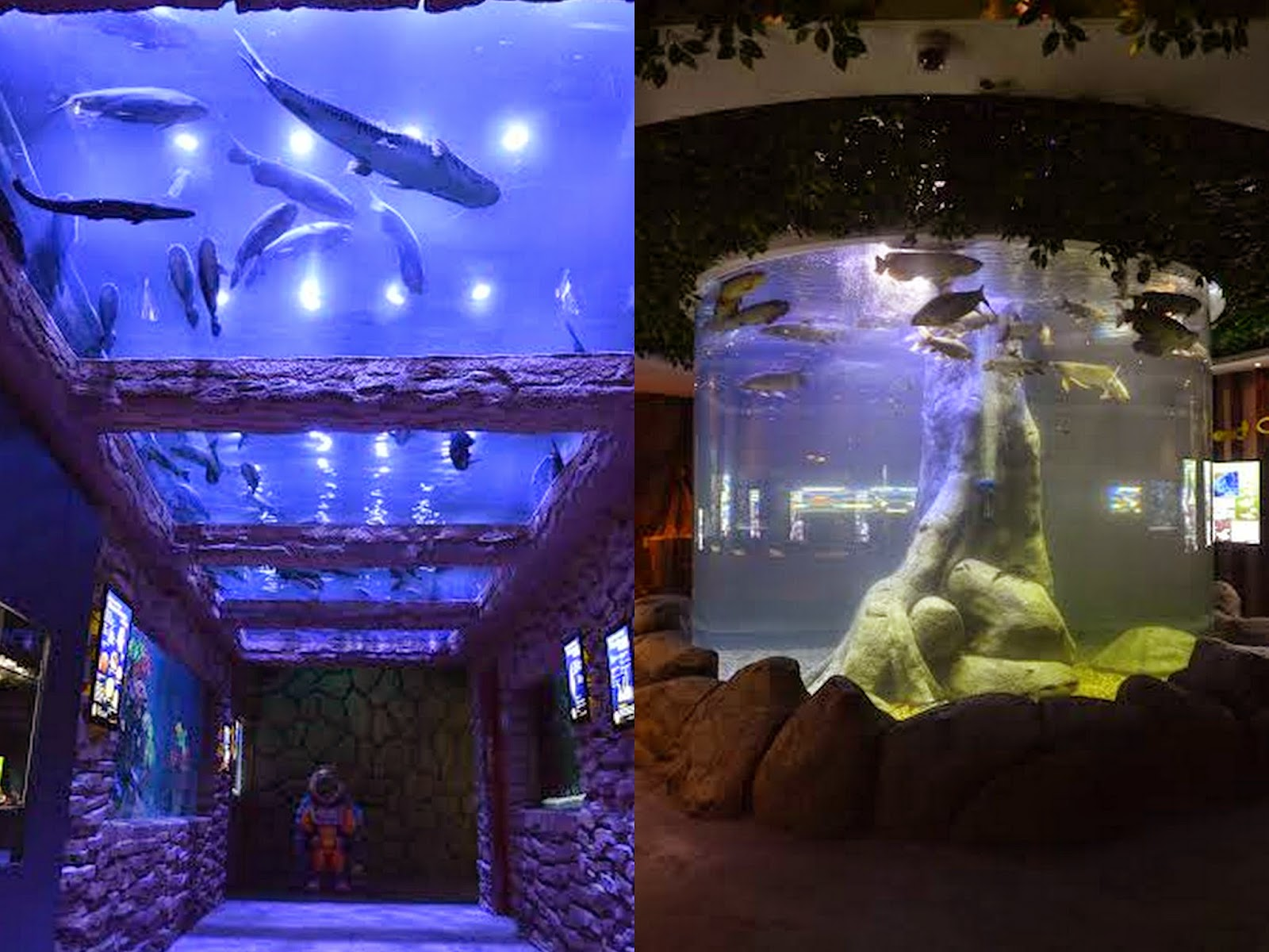 Shore Oceanarium Melaka City, The Shore Shopping Gallery @ Malacca River Grand Opening - Spicy ...
