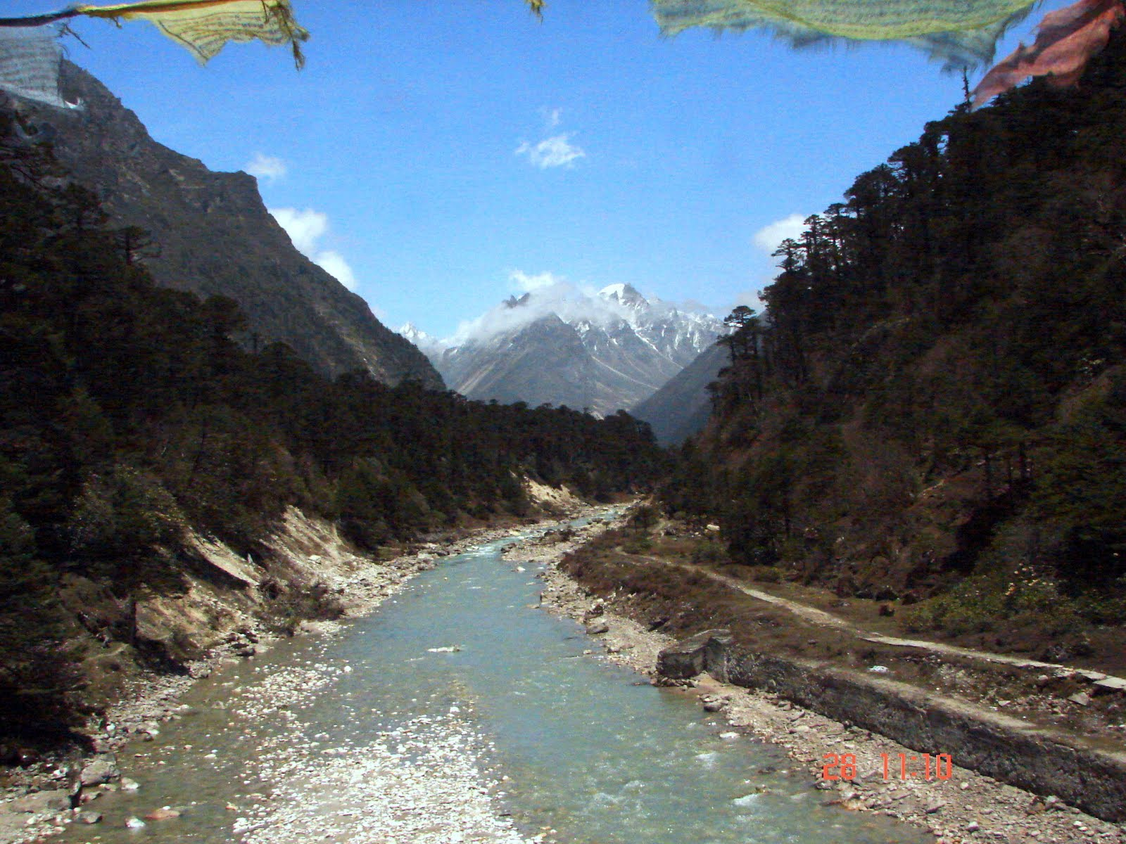 Yumthang Hot Springs Yumthang Valley, Dream Destinations: Shingba Rhododendron Sanctuary Sikkim