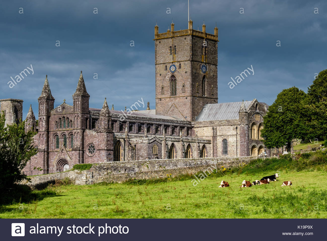 St Davids Head St Davids (Tyddewi), St Davids Cathedral Clock Tower Stock Photos & St Davids Cathedral ...