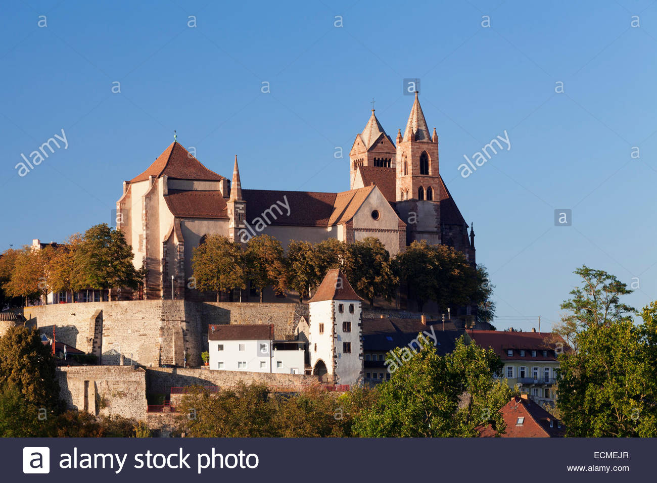 St. Stephan Cathedral  The Black Forest, Münsterberg with St. Stephen's Cathedral, Breisach, Kaiserstuhl ...